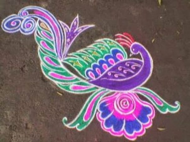 peacock kolam designs