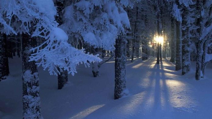 Winter Nature HD Wallpaper For Windows
