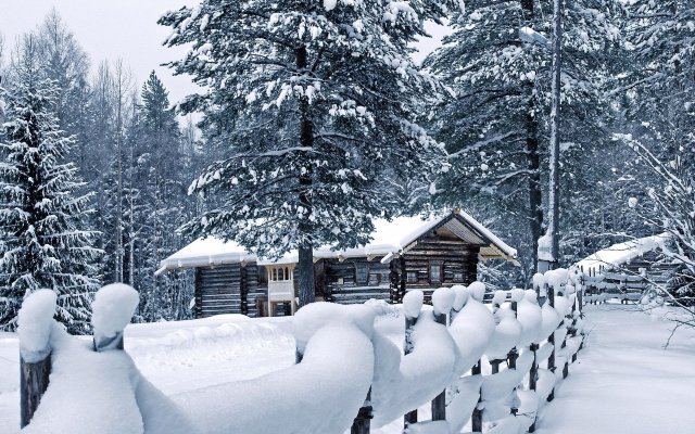 Winter Nature HD Wallpaper For Desktop