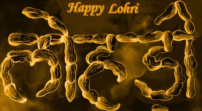 happy lohdi dp images