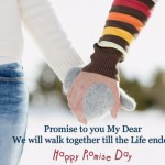 Happy Promise day Images Photos Whats App Status Wallpapers Collection