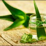 Top 15 Unknown Health Benefits Of Aloe Vera For Face,Skin & Hair