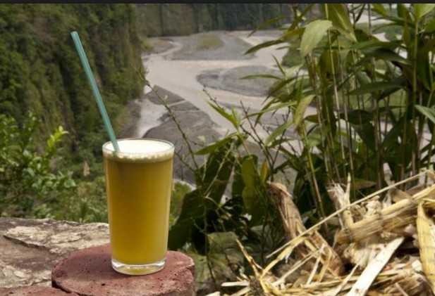 Sugarcane Juice Prevents DNA Damage