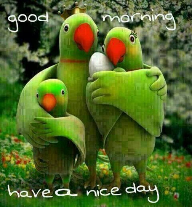 good morning picture message