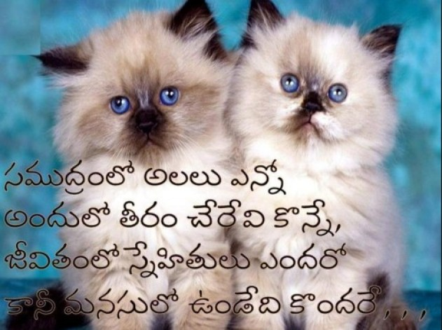 HAPPY PICTURE MESSAGE IN TELUGU