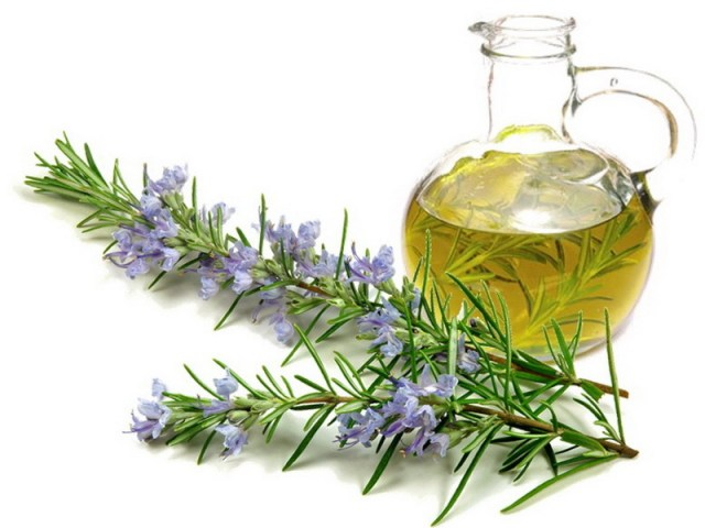 best essential oils for hair growth