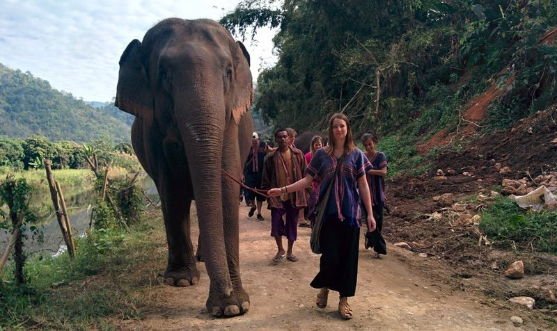 Walking an elephant in Thailand