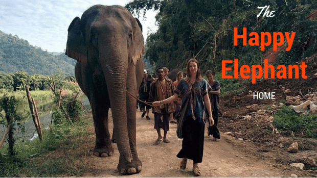 The Happy Elephant Home