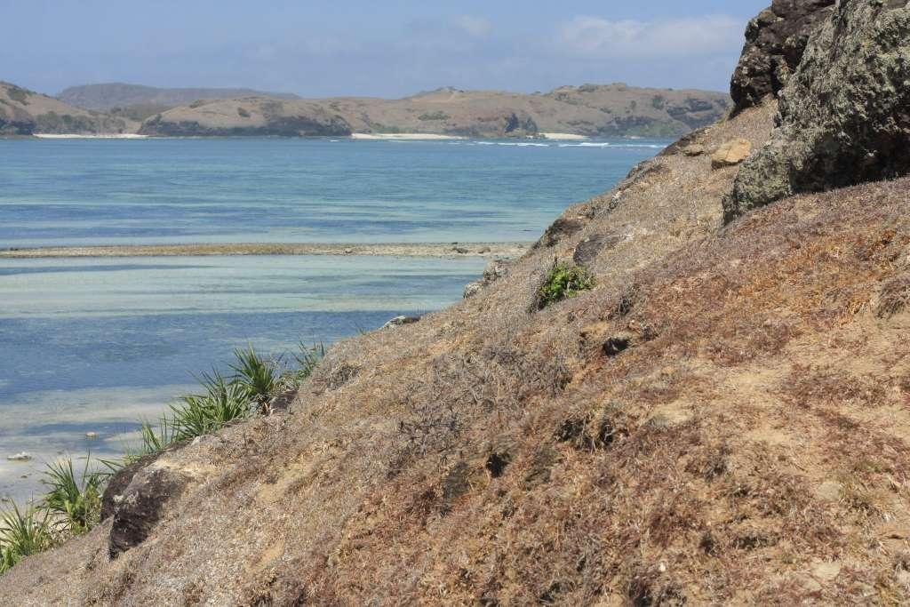 View of beach from hill in Lombok