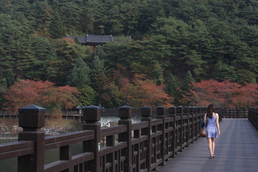 Girl on Woryeonggyo Bridge