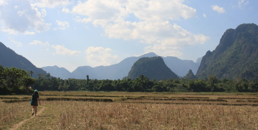 A farm field in Laos