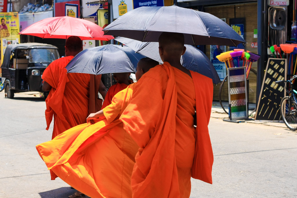 Monks with umbrellas