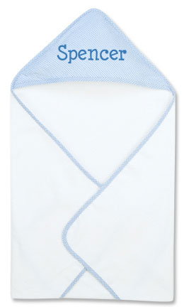 Blue Gingham Towel