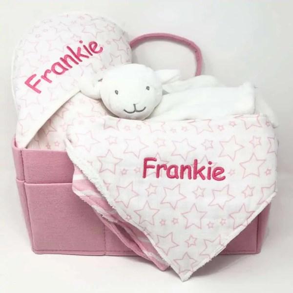 Wash Me Feed Me Baby Gift Basket - Pink
