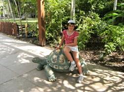 At the Australia Zoo
