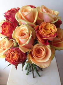 Celebrating the natural beauty of roses