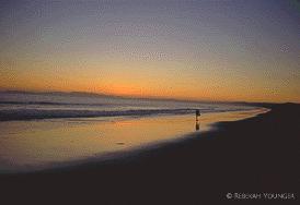 Pt. Reyes Sunset - 1988