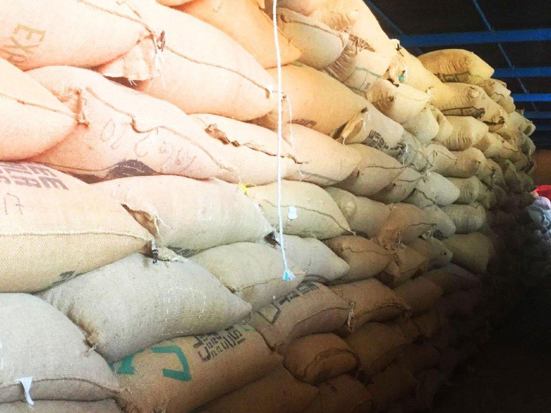 Storeroom_Guatemala_Miralvalle_Young_Hustler_Coffee1