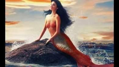 Photo of My Mermaid – Episode 11