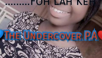 Photo of The Undercover P.A – Episode 1