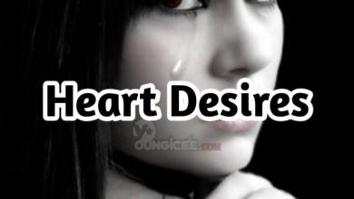 Photo of Heart Desire – Episode 8