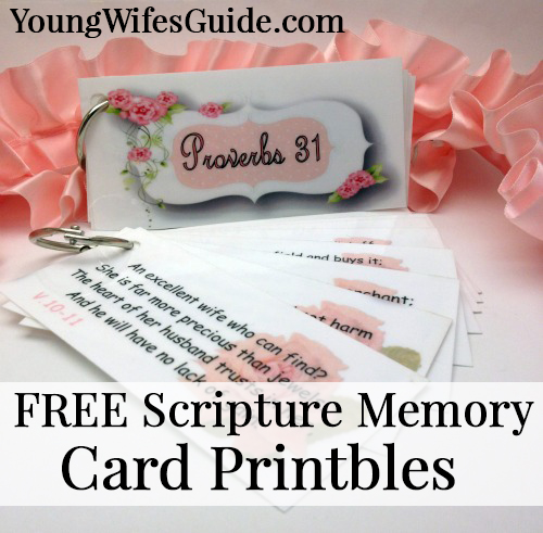Scripture Memory Cards ~ A simple way to memorize scripture
