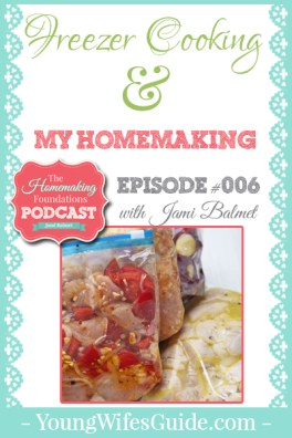 HF #6 - Freezer Cooking and My Homemaking - Pinterest