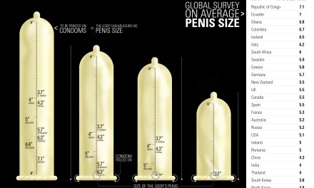 Was Statistical average penis length something is