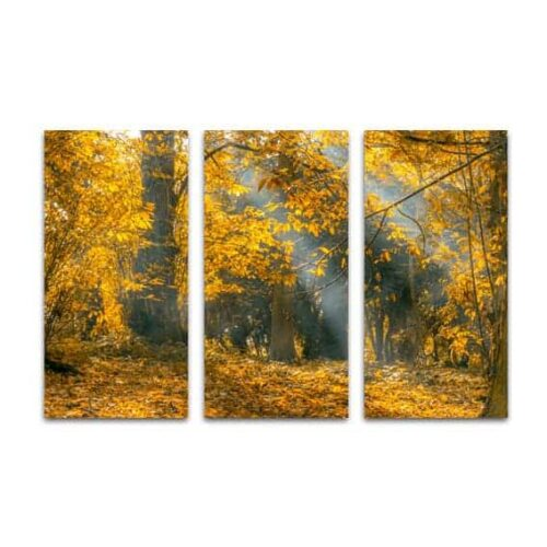 Drieluik canvas zonnestralen in herfstbos
