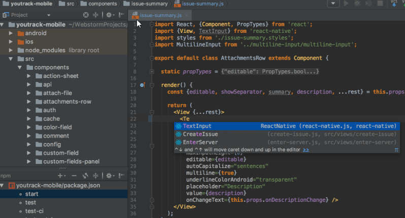 webstorm web development ide
