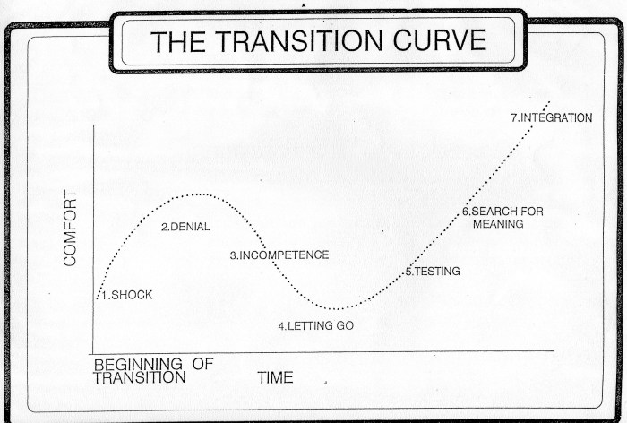Transition Curve.jpg