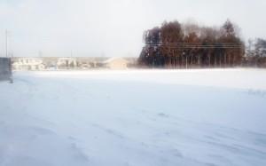 お別れの雪景色