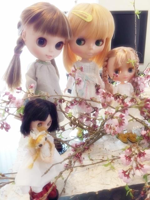 ブライス達のお花見