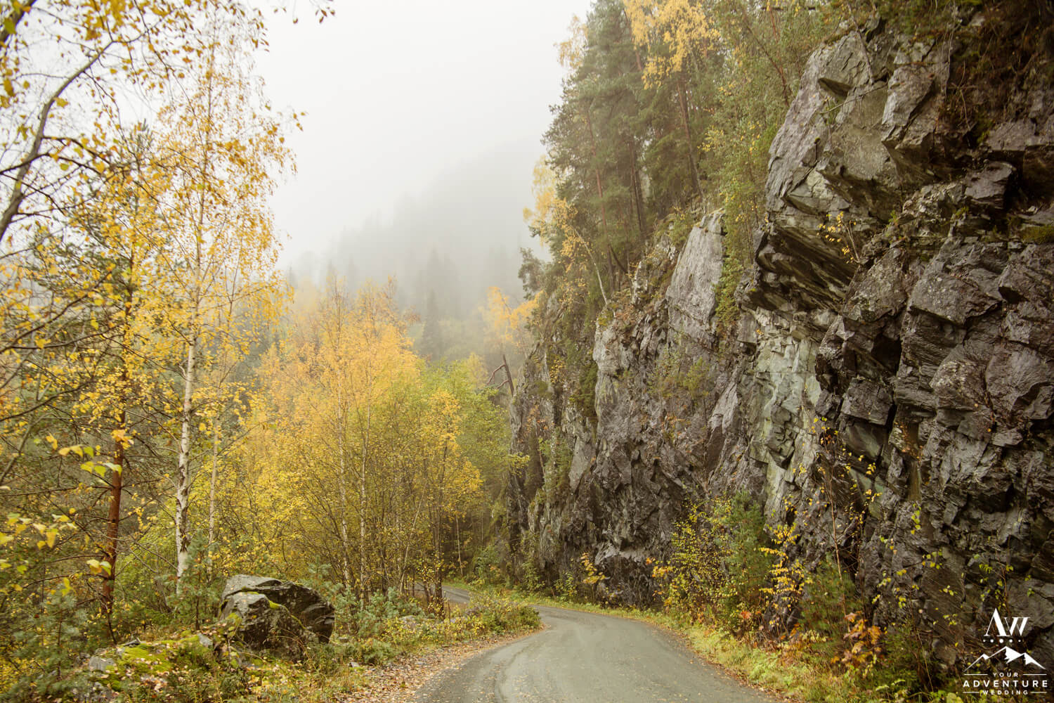 Misty Fjord Road in Norway