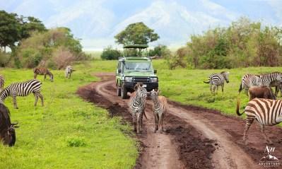 Africa Wedding Adventure Planner and Photographer