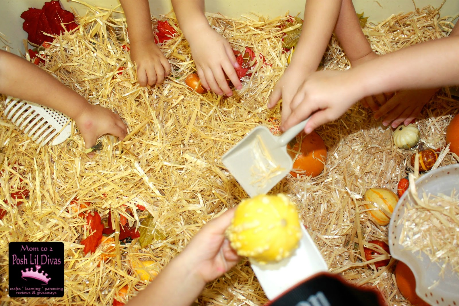 Top Sensory Table Ideas