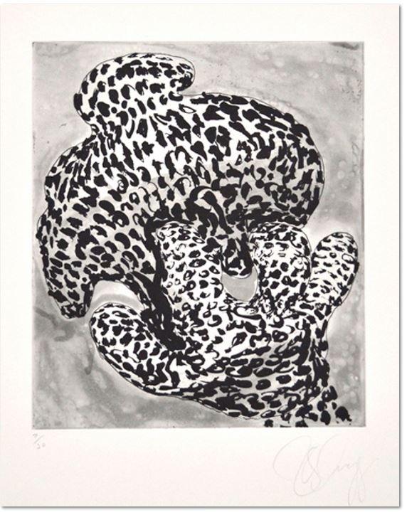Tony Cragg, Forminifera 1, 2000 - Aquatinte au sucre et vernis mou (softground etching) , Size: 53 x 39,5 cm - 30 épreuves