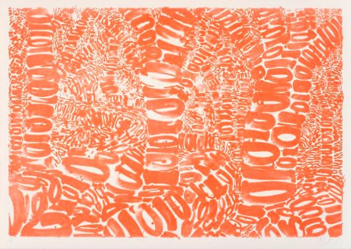 Anthony Cragg, Skogen, 2009, Lithographie, 70x100cm, © Anthony Cragg