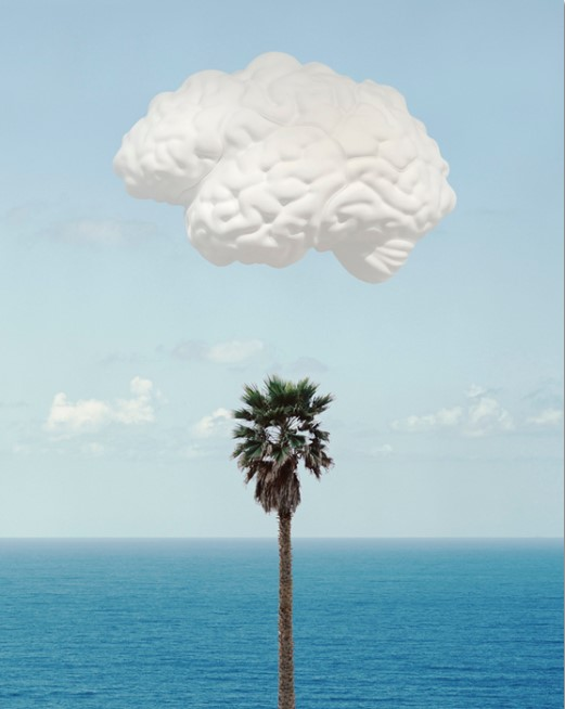 """John Baldessari:""""Brain/Cloud (With Seascape and Palm Tree)"""", 2009, Inkjet on """"Hahnemühle Photo Rag 308 gsm Paper. size: 74 x 58 cm, edition of 145, signed, dated, numbered."""
