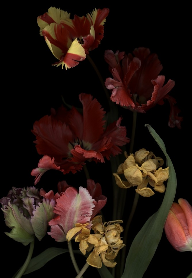 Luzia Simons, Stockage 147, 2014 Pigment print on Archival paper 193 x 121 cm Edition of 6 + 2 AP
