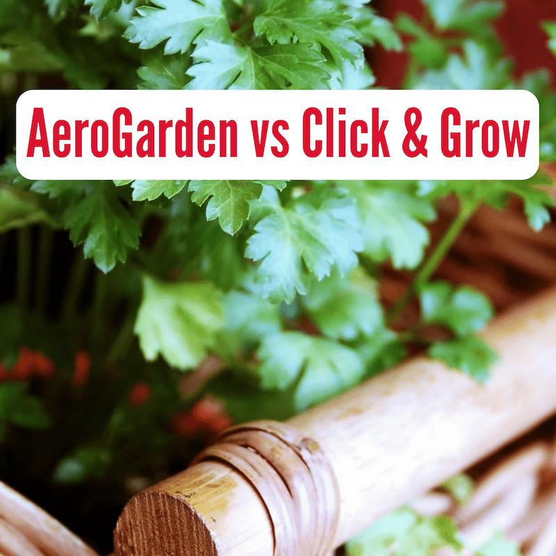 Aerogarden vs click and grow