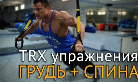 TRX упражнения на грудь и спину дома и на природе