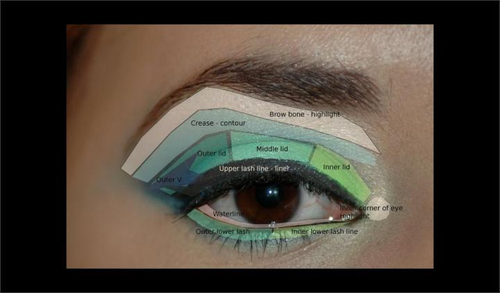 Parts of the eye tutorial