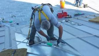 roof care