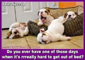 do-you-ever-have-one-of-those-days-when-its-really-hard-to-get-out-of-bed