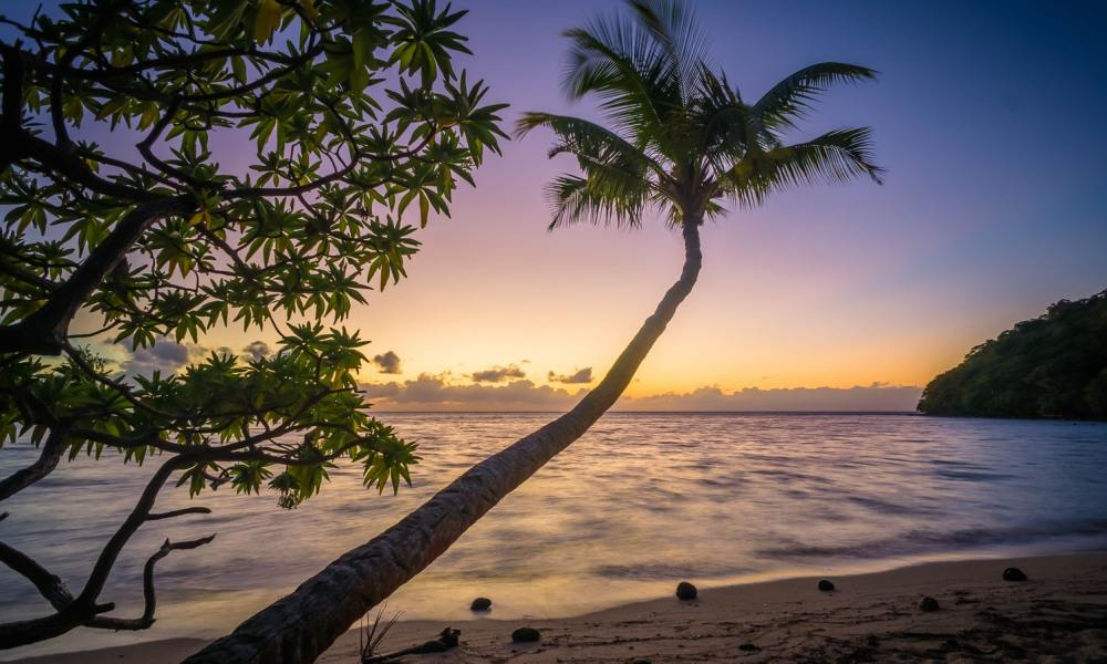 tropische vakantie