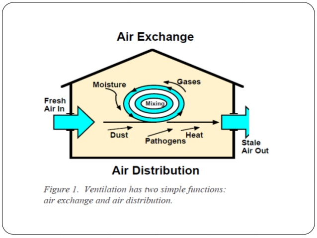 what is the effect of excessive ventilation