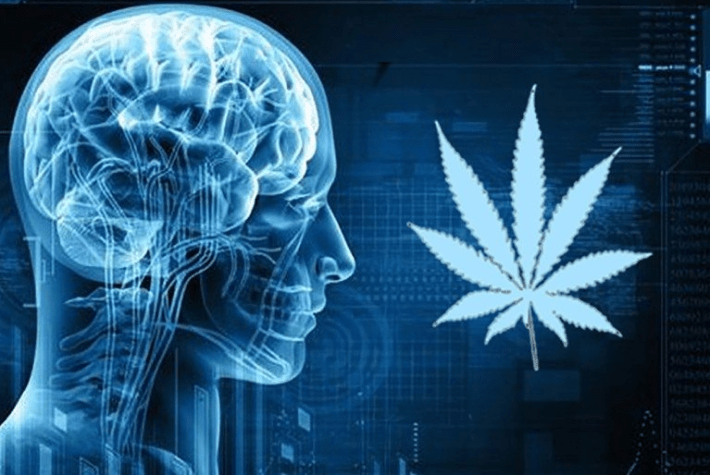 cbd for neurological disorders