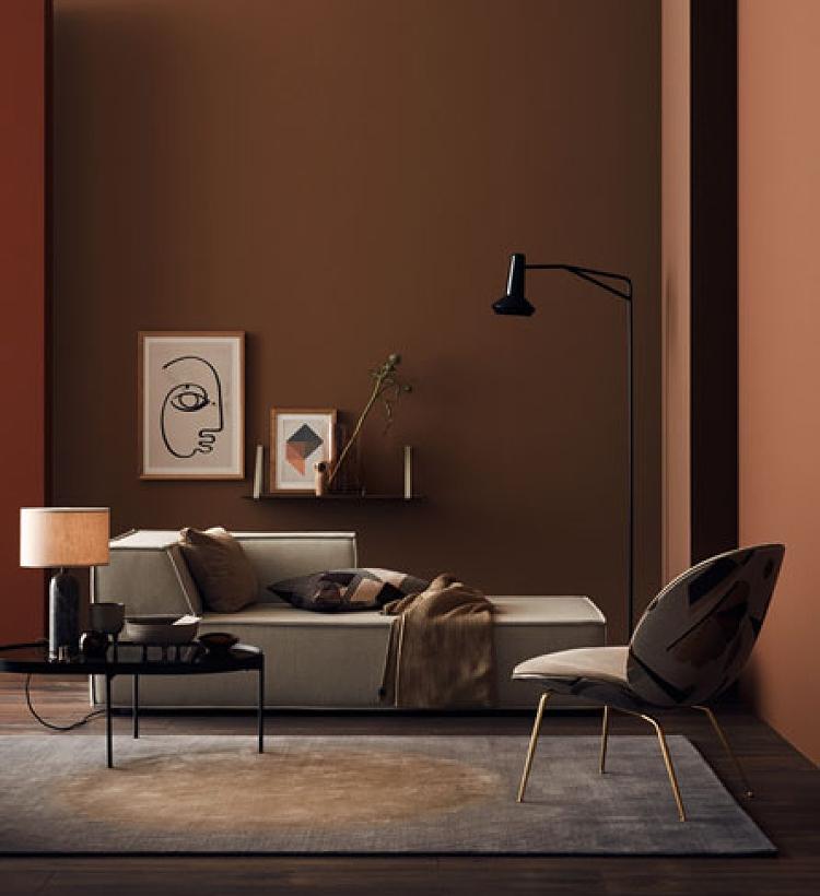 terracotta walls living room