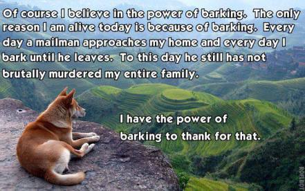 powerofbarking